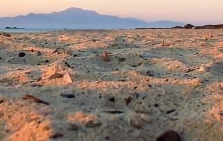 Παρουσιάζεται το Σχέδιο Διαχείρισης για τη νήσο Χρυσή – 29.09.2014
